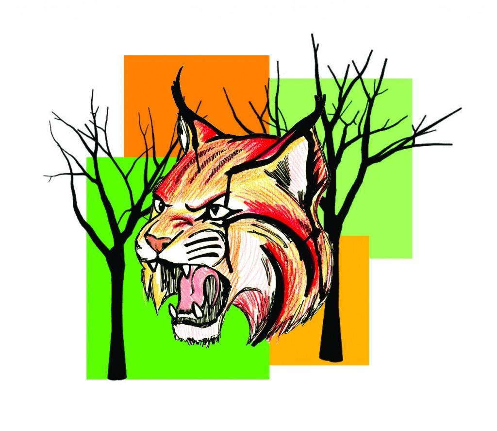 Bobcat+Stalks+Jogging+Trail