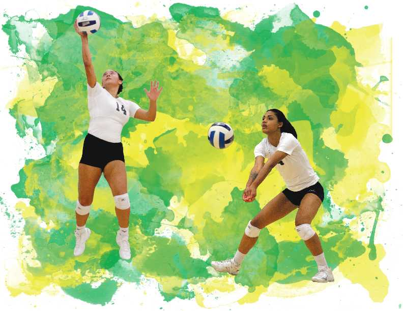 Volleyball team looks to rebuild