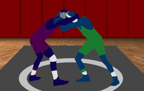 Student aims to start wrestling team