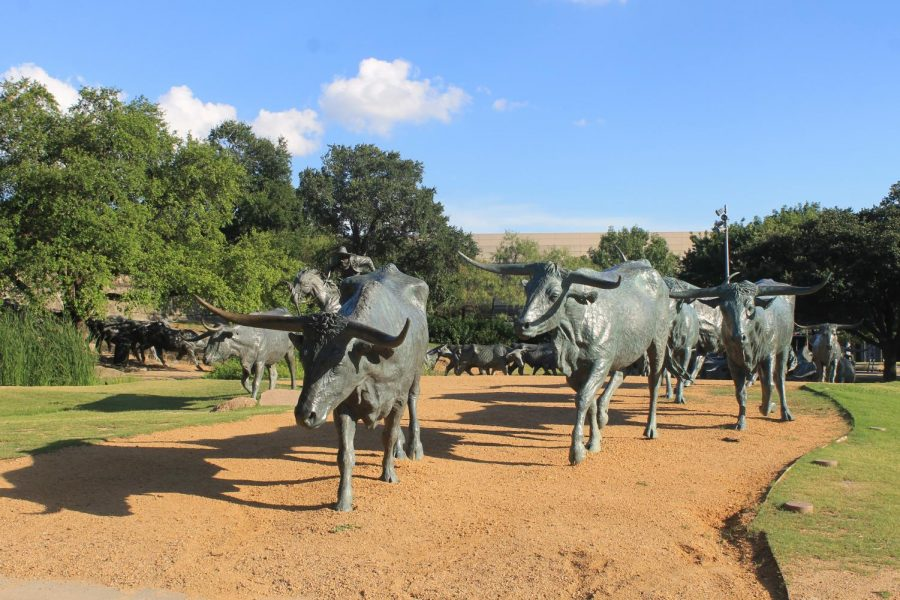 "Photo of sculpture ""The Dallas Cattle Drive"" by Robert Summers"