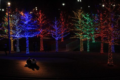 image of couple at vitruvian lights