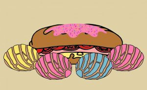 Subway bread illustration with conches